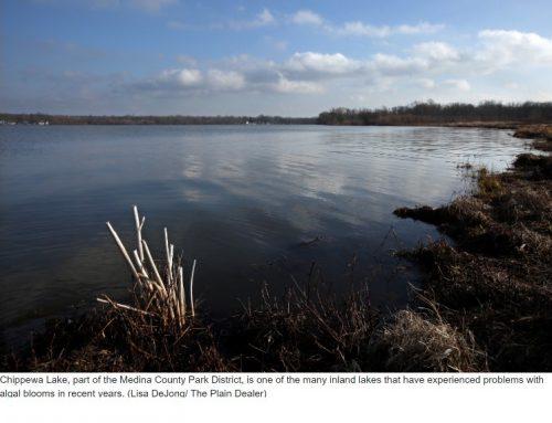 Toxic algae also threatens Ohio's inland lakes, waterways…