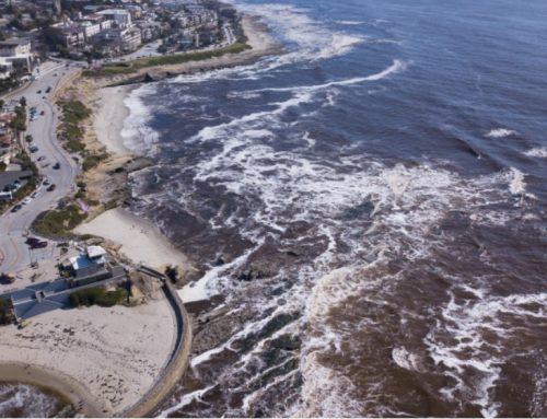 Red Tide Sweeps California Coast