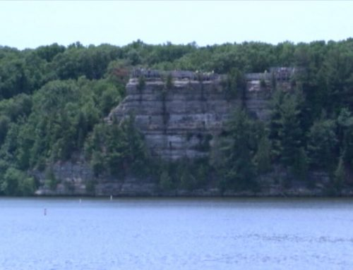 Algal Blooms Confirmed on the Illinois River Near Starved Rock