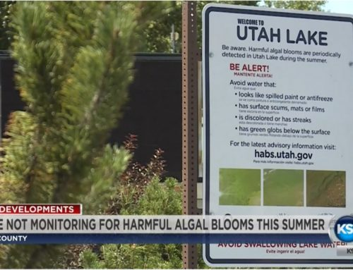 Algal blooms have slimed the water on Utah Lake
