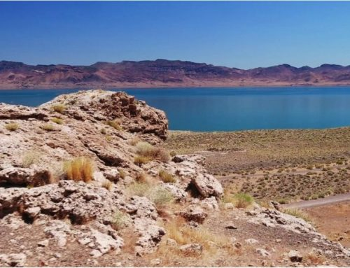 Pyramid Lake is shut down due to toxic algae bloom